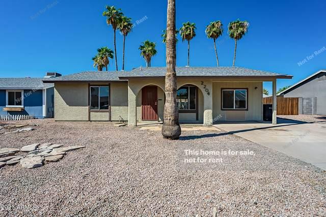 2204 W Bentrup Street, Chandler, AZ 85224 (MLS #6288626) :: Elite Home Advisors