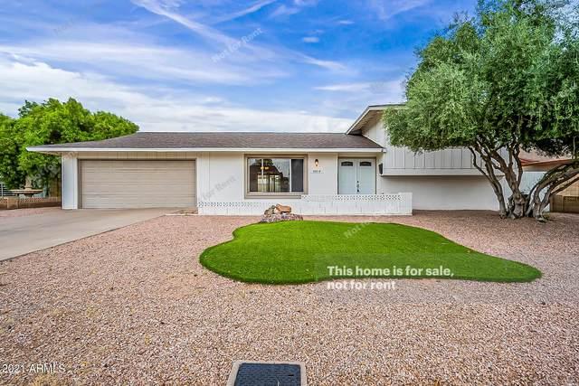 5014 S Elm Street, Tempe, AZ 85282 (MLS #6288640) :: Elite Home Advisors