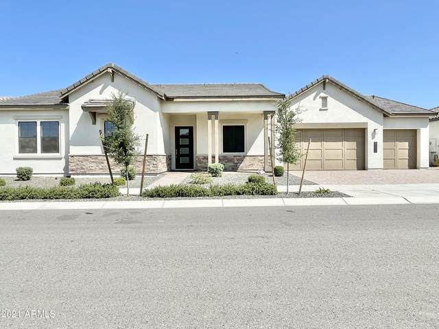 21032 E Sparrow Drive, Queen Creek, AZ 85142 (MLS #6288641) :: Yost Realty Group at RE/MAX Casa Grande