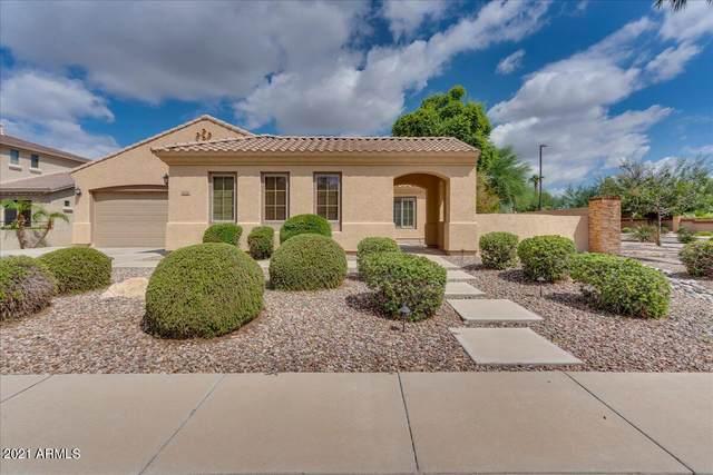 1274 E Kingbird Drive, Gilbert, AZ 85297 (MLS #6288724) :: Yost Realty Group at RE/MAX Casa Grande