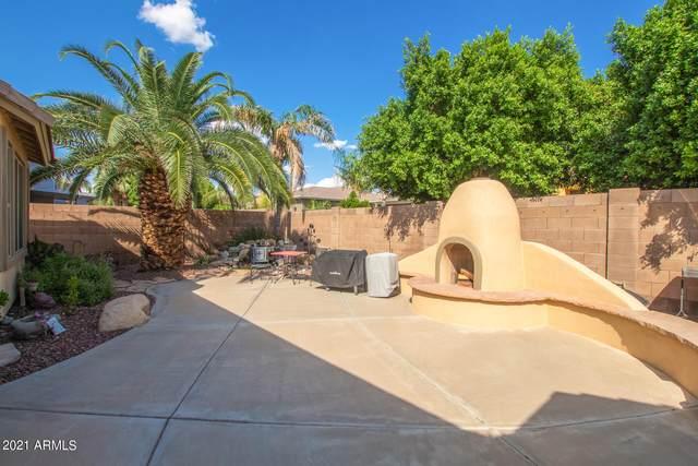6127 N 132ND Drive, Litchfield Park, AZ 85340 (MLS #6288746) :: Klaus Team Real Estate Solutions