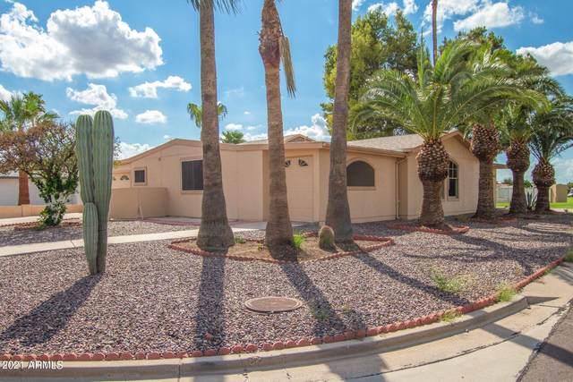 9038 E Palmer Drive, Sun Lakes, AZ 85248 (MLS #6288795) :: Jonny West Real Estate