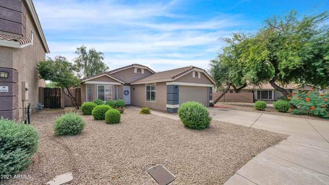 16036 N 11TH Avenue #1063, Phoenix, AZ 85023 (MLS #6288826) :: Executive Realty Advisors