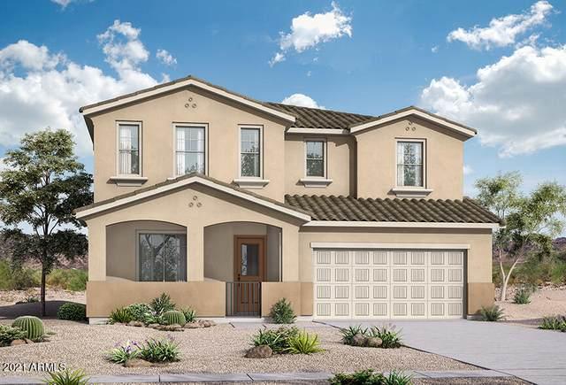 21612 S 230TH Street, Queen Creek, AZ 85142 (MLS #6288836) :: Yost Realty Group at RE/MAX Casa Grande