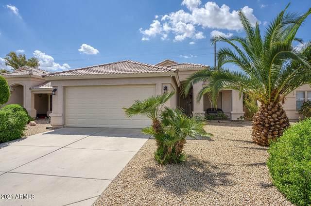 7356 N 70TH Drive, Glendale, AZ 85303 (MLS #6288866) :: Yost Realty Group at RE/MAX Casa Grande