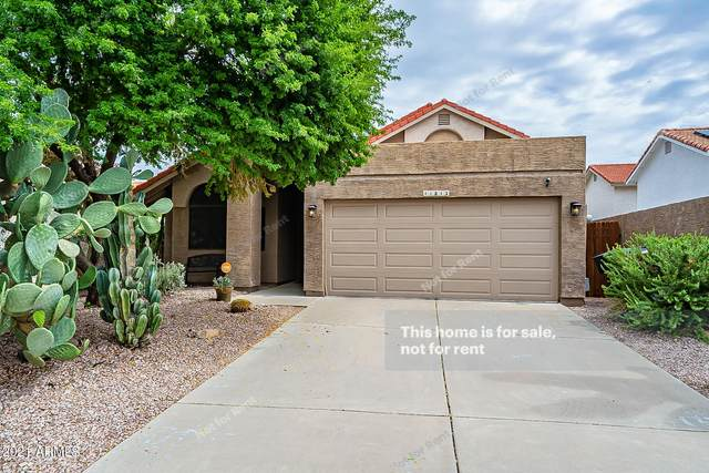 11813 N 112TH Way, Scottsdale, AZ 85259 (MLS #6288883) :: Arizona Home Group