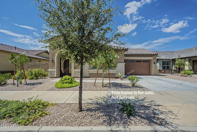 23428 S 209TH Place, Queen Creek, AZ 85142 (MLS #6289031) :: Elite Home Advisors