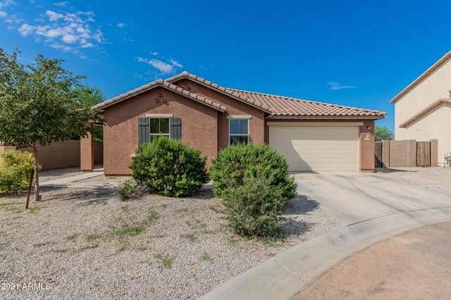 40640 W Marion May Lane, Maricopa, AZ 85138 (MLS #6289034) :: Yost Realty Group at RE/MAX Casa Grande