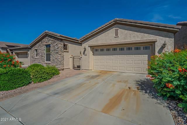 4516 E Donato Drive, Gilbert, AZ 85298 (MLS #6289045) :: Elite Home Advisors