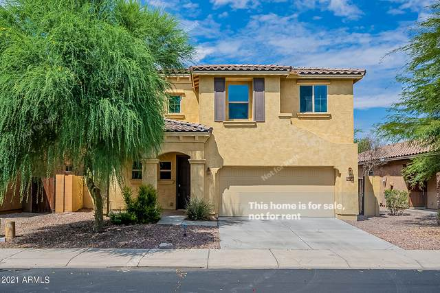 828 E Harrison Street, Chandler, AZ 85225 (MLS #6289051) :: Klaus Team Real Estate Solutions