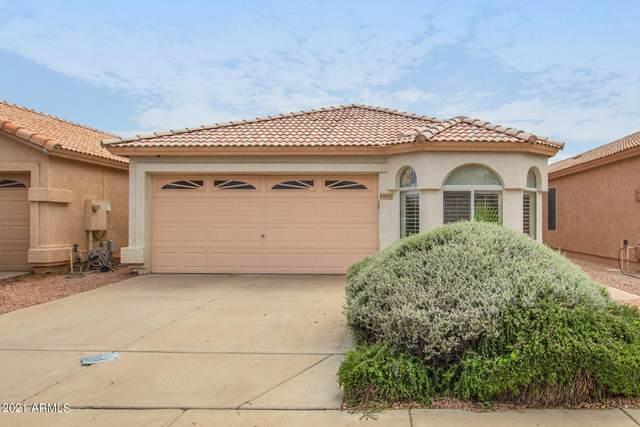 4531 E Glenhaven Drive, Phoenix, AZ 85048 (MLS #6289061) :: CANAM Realty Group