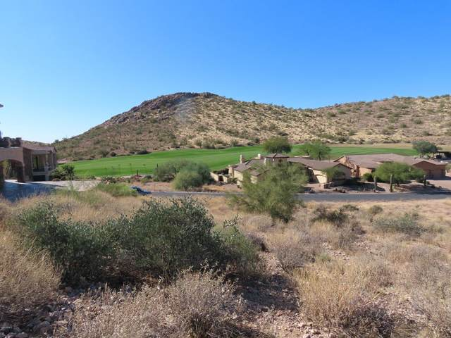 4173 S Camino De Vida Road, Gold Canyon, AZ 85118 (MLS #6289062) :: The Copa Team | The Maricopa Real Estate Company