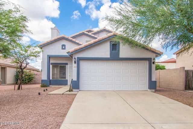 3914 N 105TH Lane, Avondale, AZ 85392 (MLS #6289076) :: Yost Realty Group at RE/MAX Casa Grande