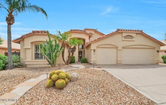 1123 W Amanda Lane, Tempe, AZ 85284 (MLS #6289083) :: Yost Realty Group at RE/MAX Casa Grande