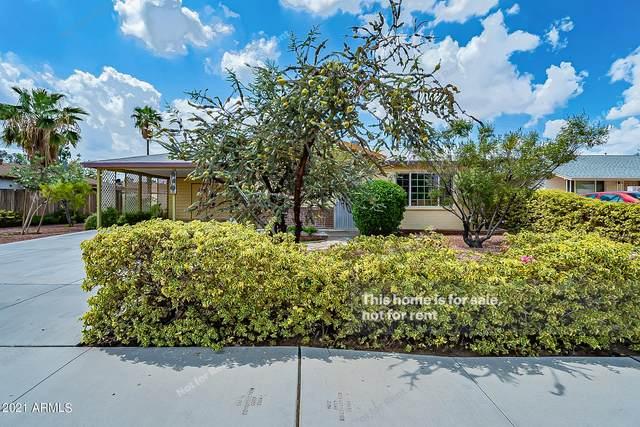 1818 S Hardy Drive, Tempe, AZ 85281 (MLS #6289131) :: Elite Home Advisors