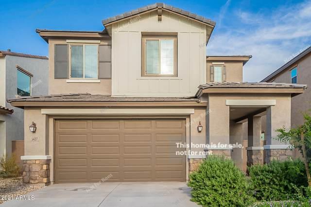 5427 S Canyon Rim, Mesa, AZ 85212 (MLS #6289143) :: Klaus Team Real Estate Solutions