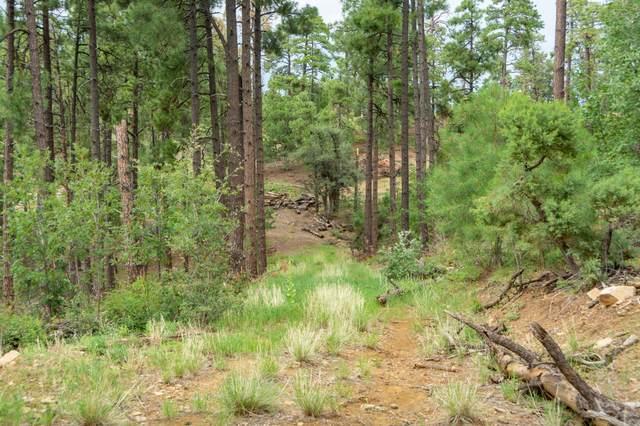 4702 W Vulture Bend (Approx) Drive, Prescott, AZ 86303 (MLS #6289171) :: Conway Real Estate