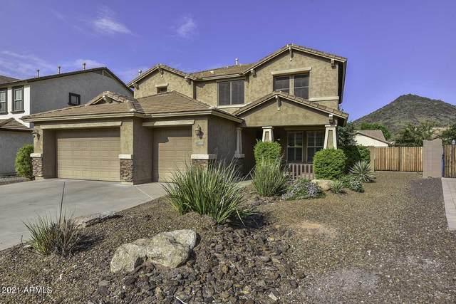 25404 N 52ND Avenue, Phoenix, AZ 85083 (MLS #6289331) :: Maison DeBlanc Real Estate