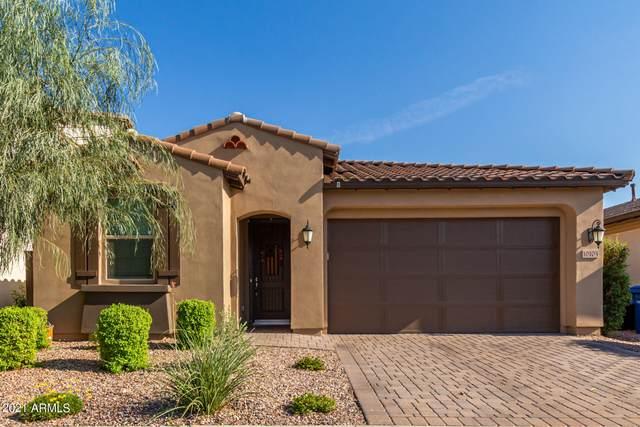 10105 E Ampere Avenue, Mesa, AZ 85212 (MLS #6289363) :: Klaus Team Real Estate Solutions