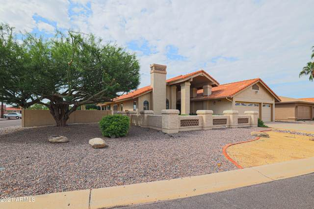 10441 E Chestnut Drive, Sun Lakes, AZ 85248 (MLS #6289379) :: Klaus Team Real Estate Solutions