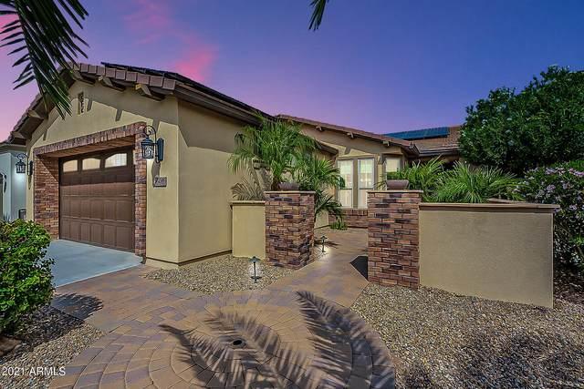 508 E Harmony Way, Queen Creek, AZ 85140 (MLS #6289431) :: My Home Group