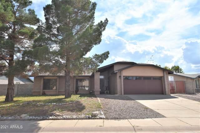 3320 Thunderbird Drive, Sierra Vista, AZ 85650 (MLS #6289596) :: Executive Realty Advisors
