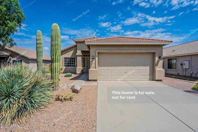 2272 W Jasper Butte Drive, Queen Creek, AZ 85142 (MLS #6289598) :: My Home Group