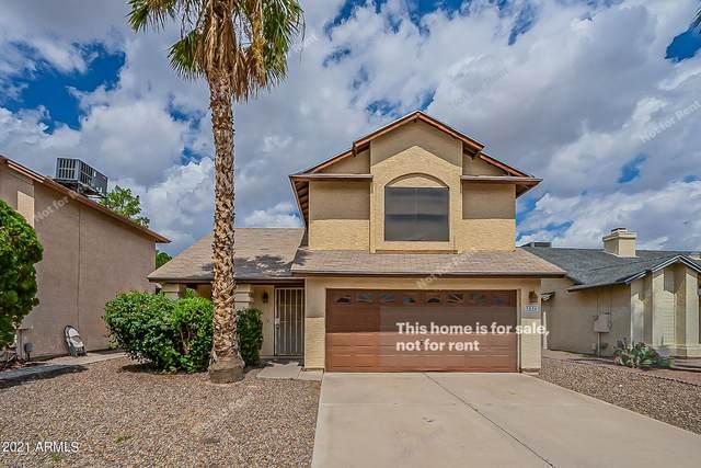 3836 W Folley Street, Chandler, AZ 85226 (MLS #6289603) :: Yost Realty Group at RE/MAX Casa Grande