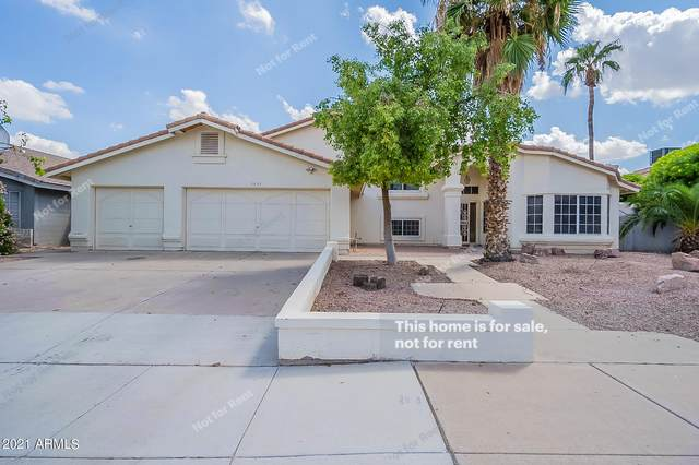 2835 W Calle Del Norte, Chandler, AZ 85224 (MLS #6289604) :: Elite Home Advisors