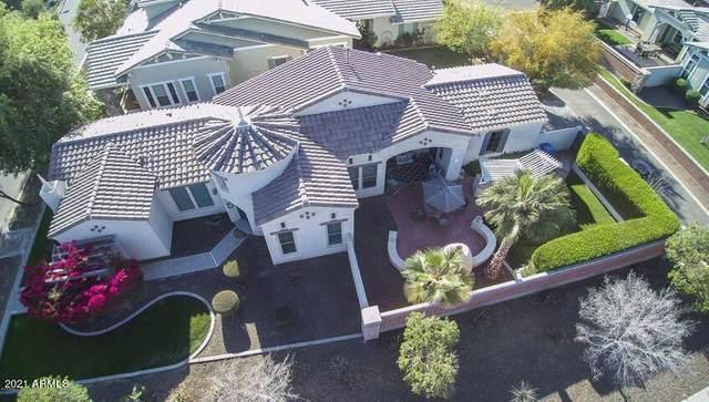 15258 W Old Oak Lane, Surprise, AZ 85379 (MLS #6289616) :: Klaus Team Real Estate Solutions