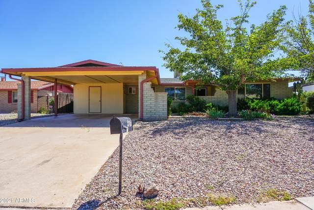 927 Pico Court, Sierra Vista, AZ 85635 (MLS #6289635) :: Service First Realty