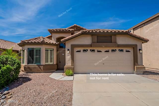 29804 N Desert Willow Boulevard, San Tan Valley, AZ 85143 (MLS #6289652) :: My Home Group