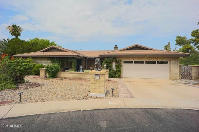 13226 N 3RD Avenue, Phoenix, AZ 85029 (MLS #6289653) :: Elite Home Advisors