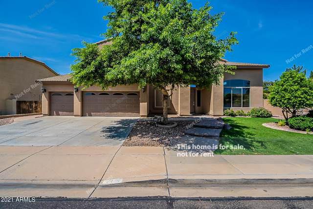 2446 S Sorrelle, Mesa, AZ 85209 (MLS #6289720) :: Klaus Team Real Estate Solutions