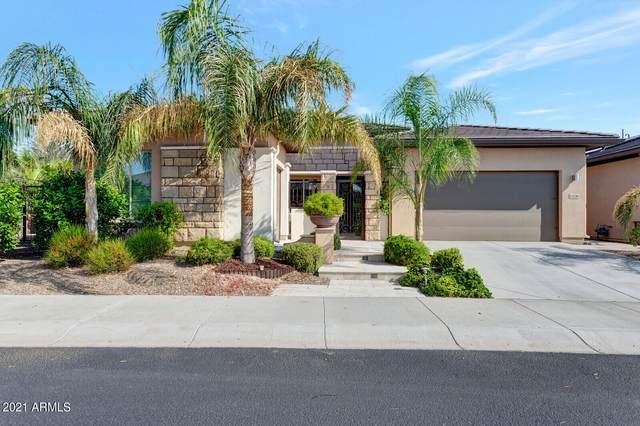 13336 W Andrew Lane, Peoria, AZ 85383 (MLS #6289791) :: Klaus Team Real Estate Solutions