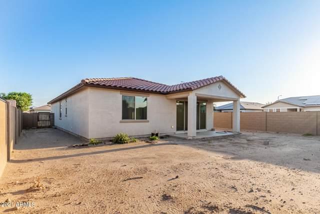 902 E Overlin Drive, Avondale, AZ 85323 (MLS #6289908) :: Executive Realty Advisors