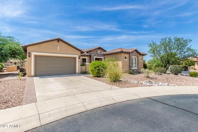 6259 W Saratoga Way, Florence, AZ 85132 (MLS #6289949) :: My Home Group