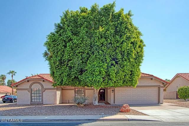 641 S Oak Circle, Chandler, AZ 85226 (MLS #6289969) :: The Copa Team   The Maricopa Real Estate Company