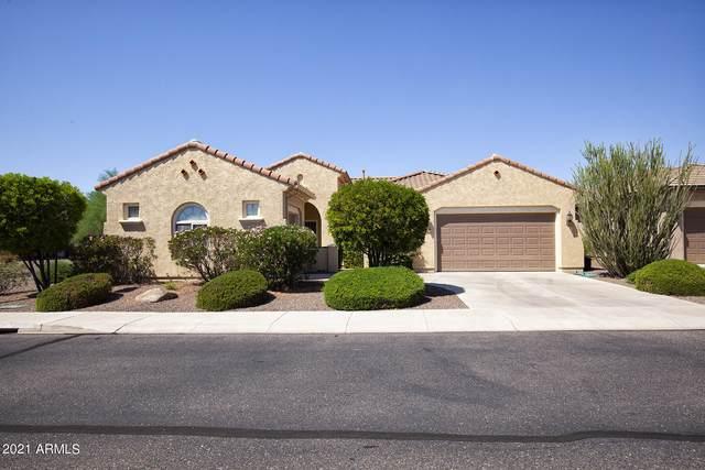 20652 N 265TH Avenue, Buckeye, AZ 85396 (MLS #6289983) :: Yost Realty Group at RE/MAX Casa Grande