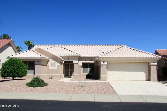 23211 N 144th Drive, Sun City West, AZ 85375 (MLS #6290102) :: Yost Realty Group at RE/MAX Casa Grande