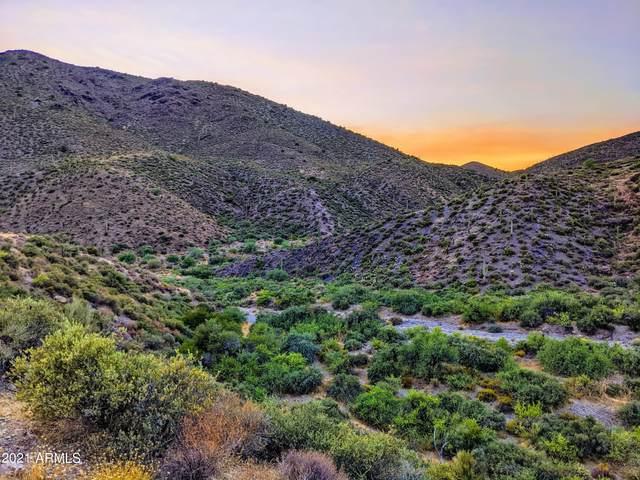 9486 E High Canyon Drive, Scottsdale, AZ 85262 (MLS #6290150) :: Conway Real Estate