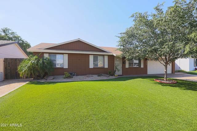 13842 N 37TH Way, Phoenix, AZ 85032 (MLS #6290281) :: Yost Realty Group at RE/MAX Casa Grande
