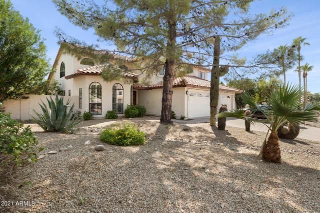 10435 E Dreyfus Avenue, Scottsdale, AZ 85260 (MLS #6290392) :: The Property Partners at eXp Realty