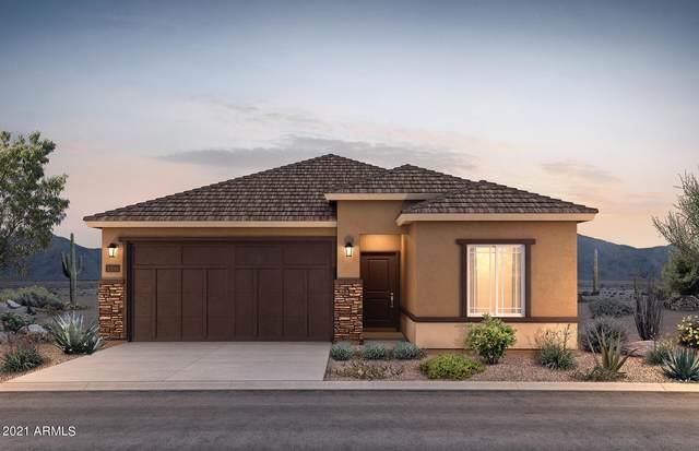 18513 N Lakeside Drive, Maricopa, AZ 85138 (MLS #6290454) :: Elite Home Advisors