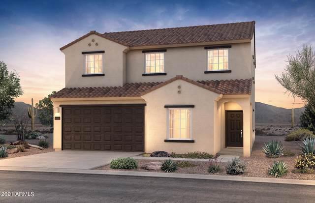 18566 N Desert Willow Drive, Maricopa, AZ 85138 (MLS #6290471) :: Elite Home Advisors