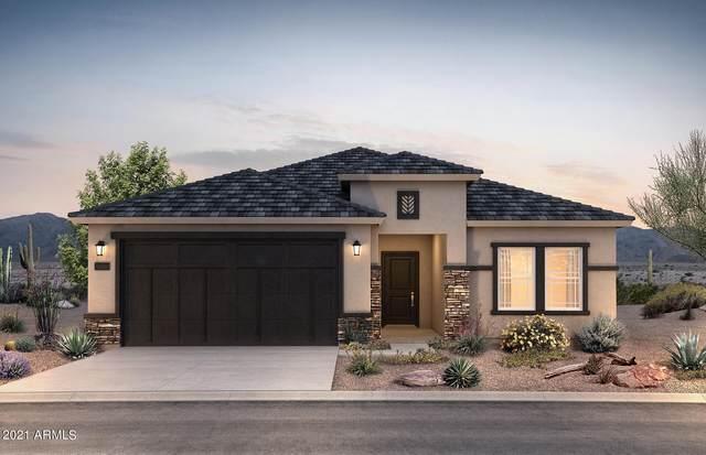 43684 W Mescal Drive, Maricopa, AZ 85138 (MLS #6290539) :: Elite Home Advisors
