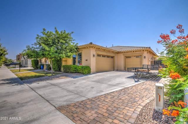 21245 E Via De Arboles, Queen Creek, AZ 85142 (MLS #6290568) :: Elite Home Advisors