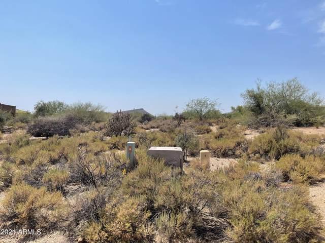 38848 N 107th Way, Scottsdale, AZ 85262 (MLS #6290591) :: The Daniel Montez Real Estate Group