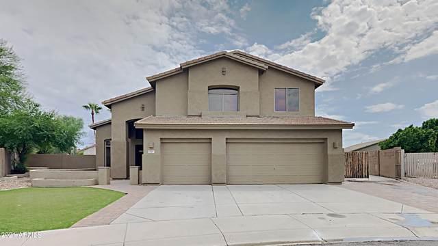 334 W Jade Court, Chandler, AZ 85248 (MLS #6290633) :: Elite Home Advisors