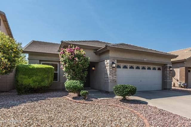 3682 N 143RD Lane, Goodyear, AZ 85395 (MLS #6290637) :: Elite Home Advisors